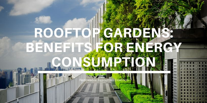 Rooftop Gardens: Benefits for Energy Consumption